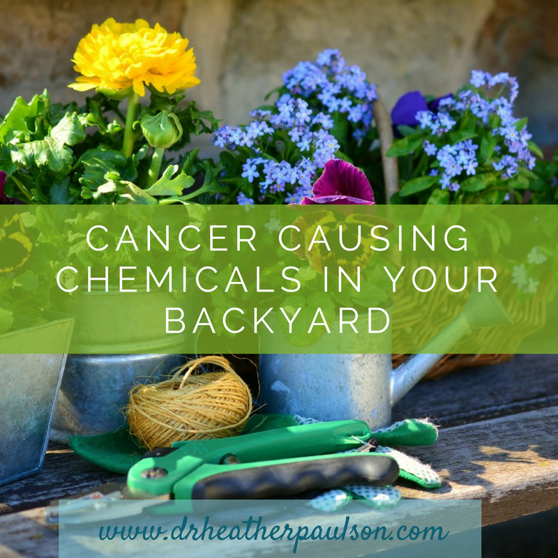 Cancer Causing Chemicals in Your Backyard